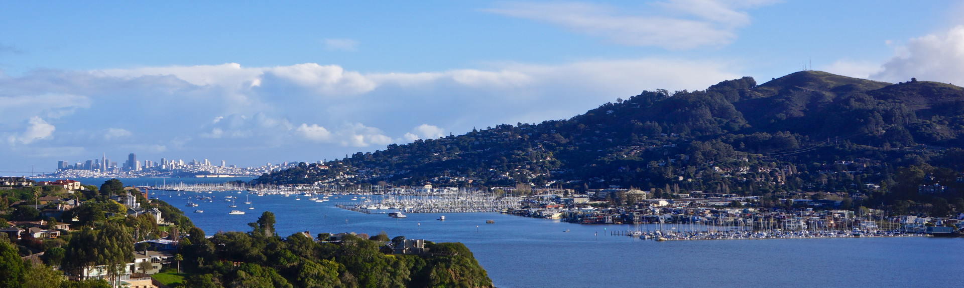 Sausalito From Strawberry - Mike Moyle