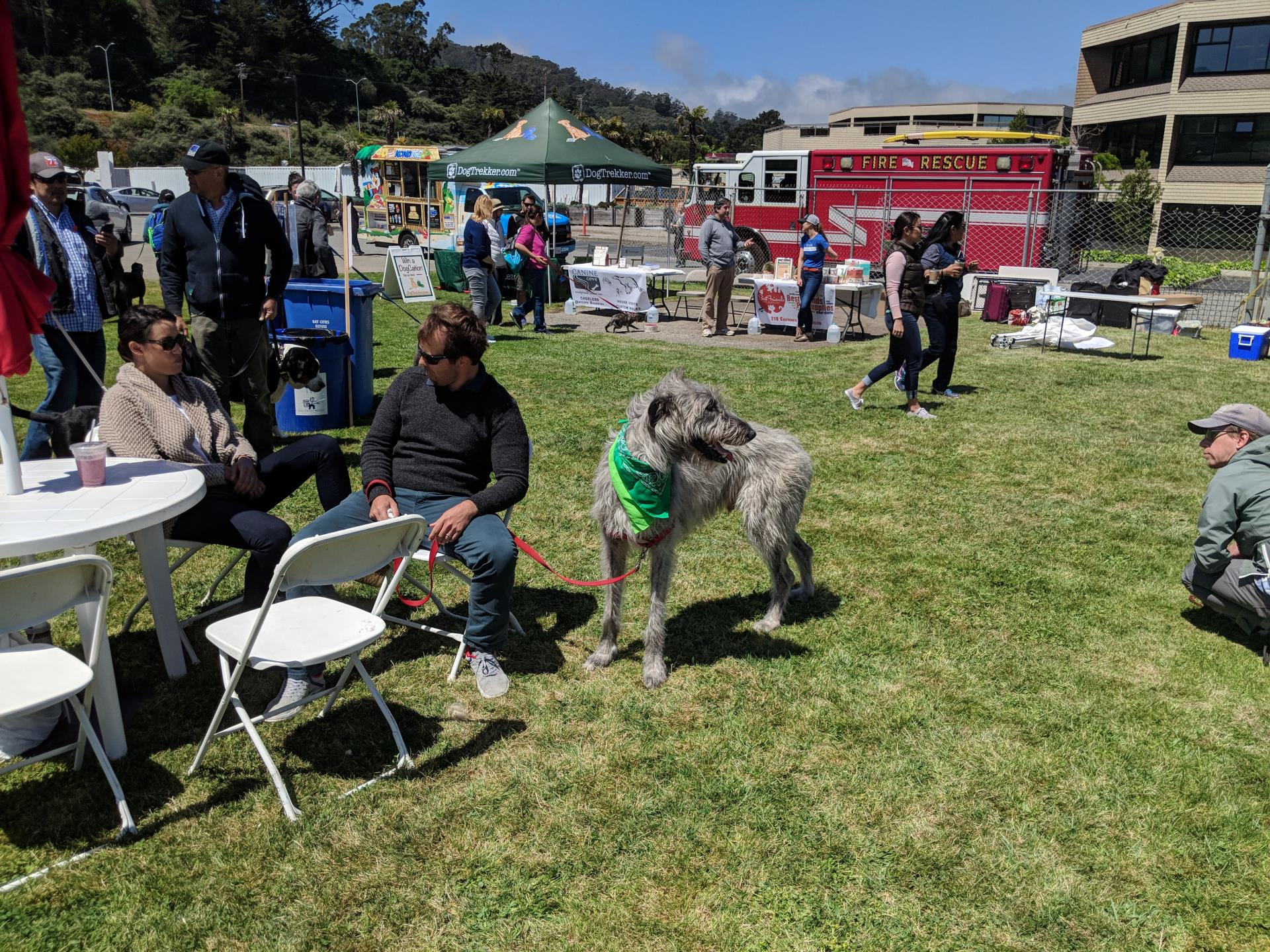WAG Dog Festival | City of Sausalito