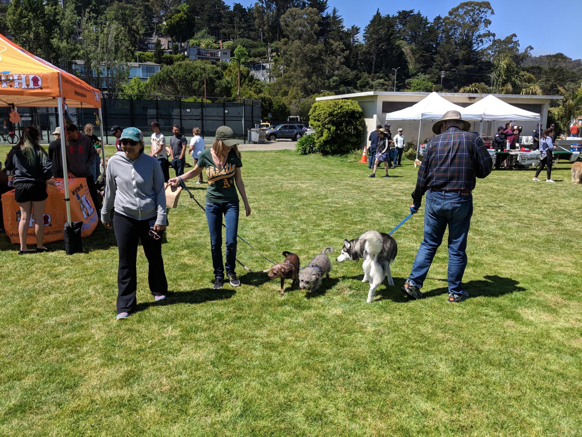 2021 WAG Dog Festival
