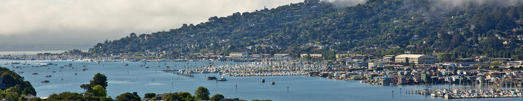Sausalito from Strawberry