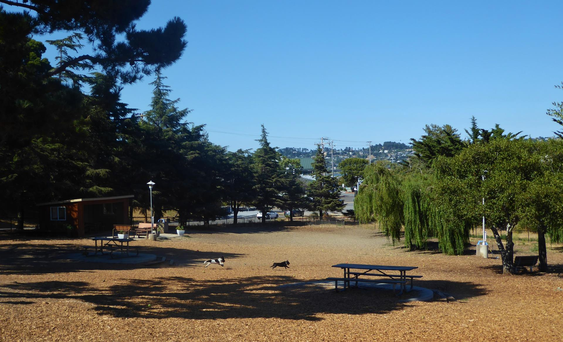 Remigton Dog Park